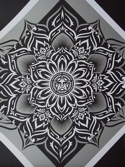 Shepard Fairey Lotus Diamond Silver