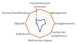 Pilote de processus mission et rôle : développer la maturité de son processus.