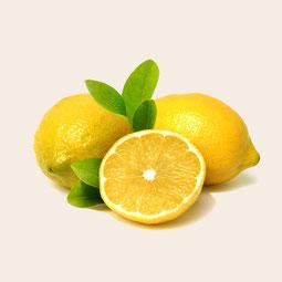 Essence de citron - Citrus limonum