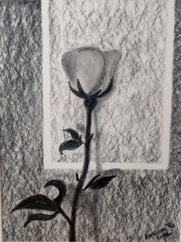 Rose 40x60 cm