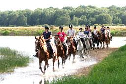 Equitation, baignades et promenades au bord du lac