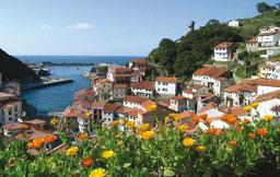 Abogados de Desahucio en el Principado de Asturias