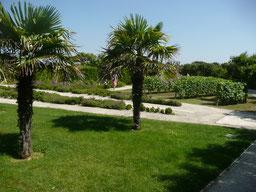 Les jardins de Chassiron