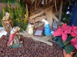 聖イグナチオ教会馬小屋12月14日02