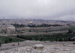 オリーブ山から見た神殿の丘