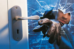 Crimtech Business and Commercial Security