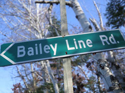 "Green road sign reading ""Bailey Line Road""."