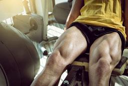 Trainingsschema trainingsschema's workout workoutschema afvallen spierkracht spiermassa ontwikkelen opbouwen benen