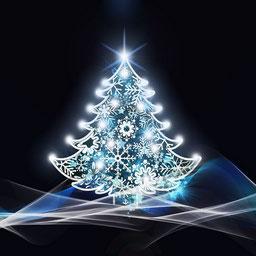 arbre de Noel pour la tombola de l'UCAL à Lezay
