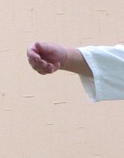 広義の陰(母指先は受けに向かわず 他の指は揃えて取りの中心に向かう 腕を出すが手首は屈曲のまま)狭義の陽(掌は上を向く)