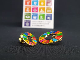 SDGsバッジ SDGsバッチ 企業向けSDGsバッジ 企業向けSDGsバッチ SDGS