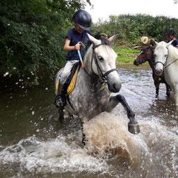 Les joies de l'aqua-poney dans l'Armançon