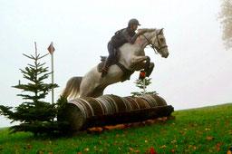 Du vent dans les chevaux, équipe compétition CCE