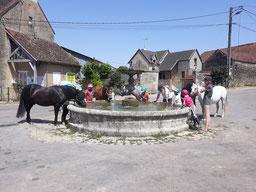 Notre poney-club à Senailly, joli village de l'Auxois