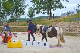 Jeux à poney à Senailly, à proximité de Montbard et Semur en Auxois