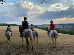 Balades à cheval ou à poney sur les collines de Senailly (21)