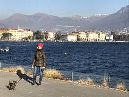 Spaziergang an der Seepromenade von Lugano