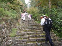 桑実寺へつらい階段・・・