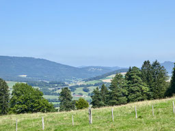 Blick über das Delsbergbecken