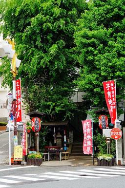 早稲田通りを東へ進んでね。タンポポから徒歩12分だよ