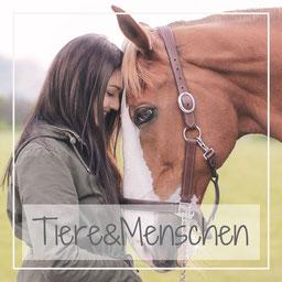 Tiershooting, Hundefotografie, Katzenshooting, Pferde Fotografie