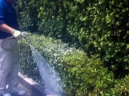 集合住宅の環境管理サービス/蚊対策