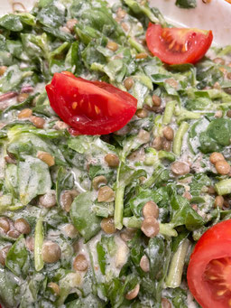 Portulak Salat mit Linsen