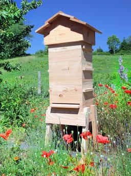 ruche warré carré de la fabrique a ruche