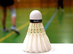 Freizeitsport TV-Pfaffenweiler Badminton gemischt frauen männer