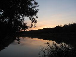 Sonnenuntergang am Prerowstrom
