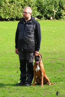 Begleithundeprüfung Boxer Hund vonderwaldnielerheide