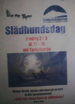 Helags Husky : Unser letzter Schlittenhundetag