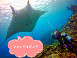 TAKUDIVE石垣島のファンダイビングページ