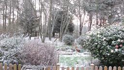 jardin sous la neige chambres d'hôtes de ker holen à saint-lyphard
