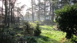 le jardin en hiver à chambres d'hôtes de ker holen à saint-lyphard