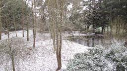 jardin et mare sous la neige chambres d'hôtes de ker holen à saint-lyphard