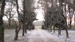 Jardin et allée sous la neige chambres d'hôtes de Ker Holen à St-Lyphard
