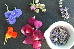 Rezepte für heimische Kräuter & Blüten Juni&Juli