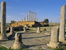 Ciudad arqueológica de Thuburbo Majus