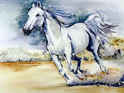 Au galop-Aquarelle