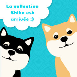 Des accessoires shiba et des chaussettes
