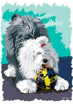 disegno-drawing-bobtail-cane-dog-digital-art-play-ball-gioco-palla-ritratto-portrait