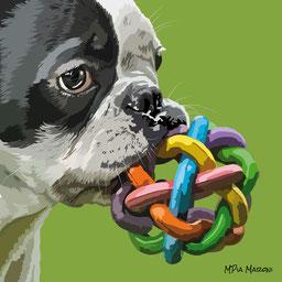 disegno-drawing-portrait-ritratto-Bouledogue francesecane-dog-digital-art-primopiano-sguardo-gioco-bocca-french-bulldog