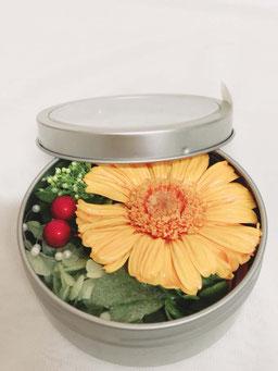 缶ガーベラ W9D9H4 1,400円