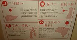 梅干し×雑学【その2】