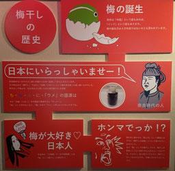 梅干しの歴史【前半】