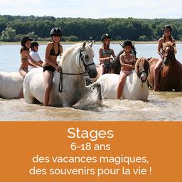 Domaine équestre des Grilles, stages pour passionnés de poney et cheval