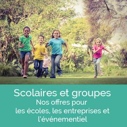 Domaine équestre des Grilles, accueil de groupes, écoles, entreprises, évènements dans l'Yonne