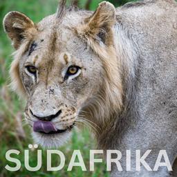 Kurzurlaub in Schweden und Dänemark