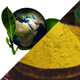 photo de pigments ocre et d'un globe